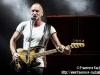 Sting - © Francesco Castaldo, All Rights Reserved